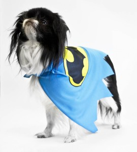 DC Batman_Dog AP