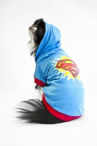 DC Superman Original_Dog AP