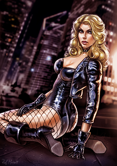 DC_Fan_Art_16_black_canary_by_raffaelemarinetti-d5e06rl