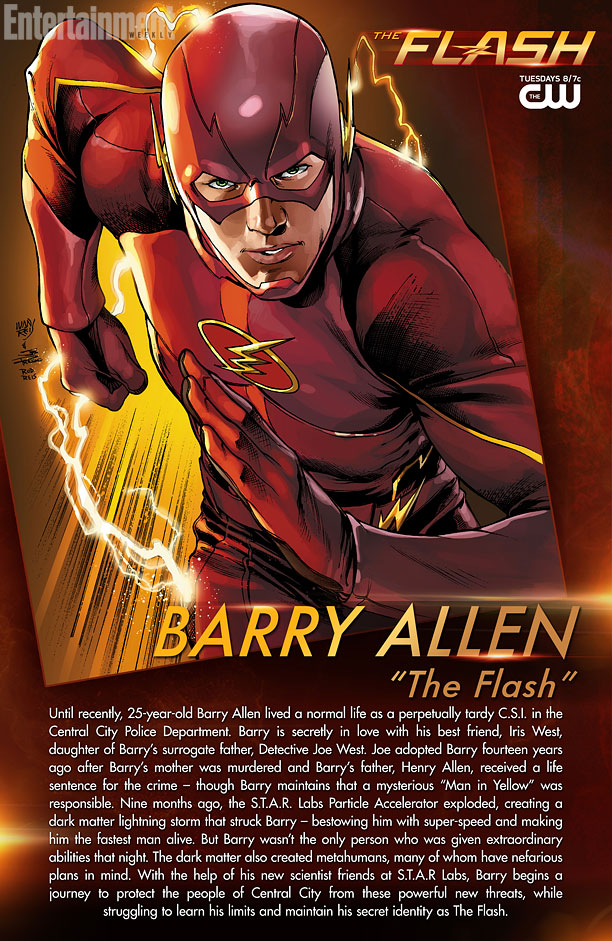 Barry Allen Cartes The Flash